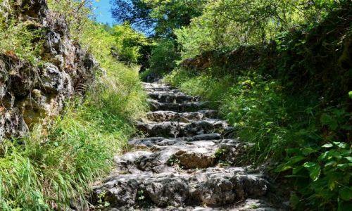 Zdjecie FRANCJA / Provance / Castellane / Schody do kaplicy na szczycie skały