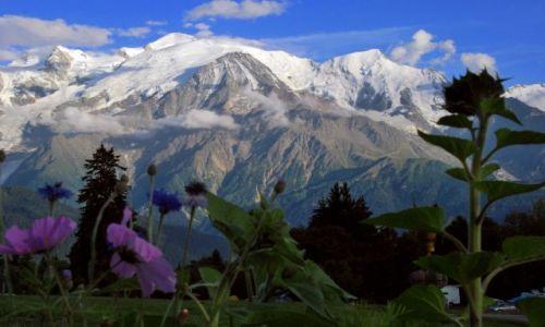 Zdjecie FRANCJA / Alpy / plaine joux / Masyw Mt Blanc