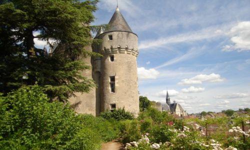 Zdjecie FRANCJA / Środkowa Francja / Tours / Zamki nad Loarą