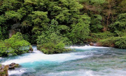 Zdjecie FRANCJA / Prowansja / Fontaine de Vaucluse  / Rzeka Sorgue 3