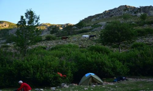 FRANCJA / Korsyka / Ciotullu-Manganu / Na szlaku_6_5