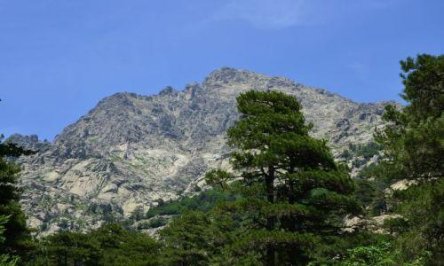 FRANCJA / Korsyka / Onda-Vizzavona / Na szlaku_8_9