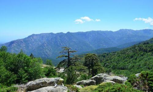 FRANCJA / Korsyka / Vizzavona-Capanelle / Na szlaku_9_6