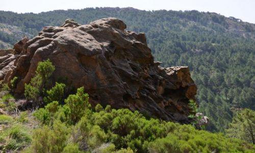 FRANCJA / Korsyka / Asinau-Paliri / Na szlaku_13_5