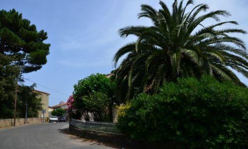 FRANCJA / Korsyka / Paliri-Conca / Na szlaku_14_5
