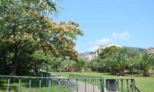 Zdjecie FRANCJA / Korsyka / Bastia park / Bastia_3