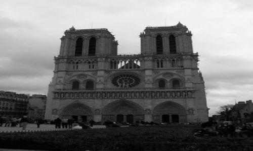 Zdjecie FRANCJA / Ile de France / Paryż/Notre Dame / Notre Dame