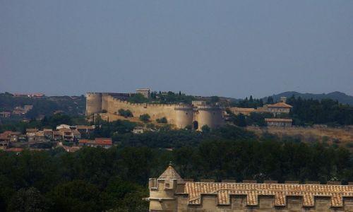 Zdjęcie FRANCJA / Prowansja / Avignon / Avignon, widok na Villeneuve les Avignon