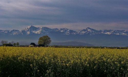 FRANCJA / Haute-Pyrenees / Widok z okolic Tarbes / Pireneje
