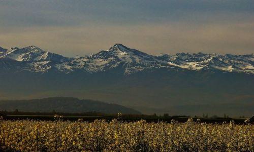 Zdjęcie FRANCJA / Haute-Pyrenees / Widok z okolic Tarbes / Pireneje