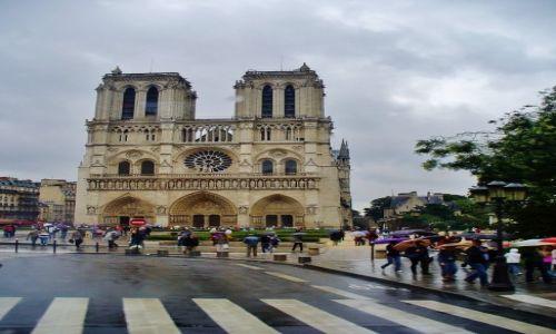Zdjęcie FRANCJA / Ile de France / Paryż / Paryż, Notre Dame