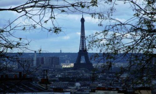 Zdjecie FRANCJA / - / Paryż / Wieża