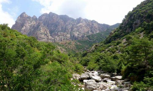Zdjecie FRANCJA / Korsyka / okolice Porto / góry nad wąwozem  La Spilonca