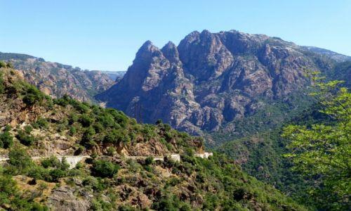 Zdjecie FRANCJA / Korsyka / droga do Col de Verghio / trasa z Porto na przełęcz Col de Verghio