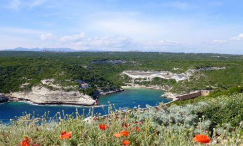 Zdjecie FRANCJA / Korsyka / Bonifacio / widok na zotokę