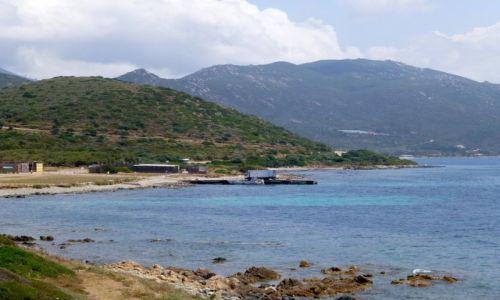 Zdj�cie FRANCJA / Korsyka / w drodze do Ajaccio / w drodze do Ajaccio