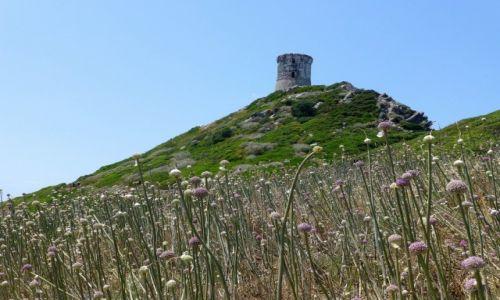 Zdjęcie FRANCJA / Korsyka / Półwysep La Parata / wieża na Pointe la Parata