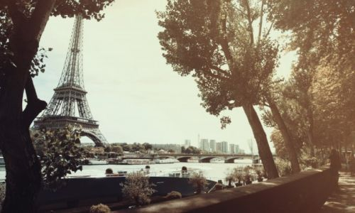 Zdjecie FRANCJA / Paryż / Paryż / Wieża Eiffla