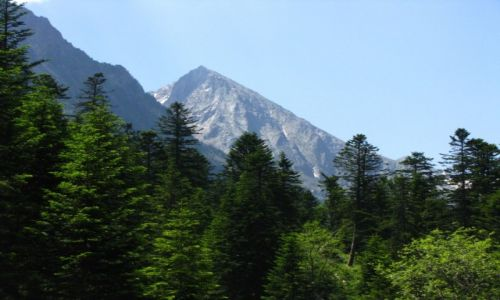 Zdjęcie FRANCJA / Midi-Pyrenees / okolice Cauterets / trekking Cauterets - Lac d'Estom