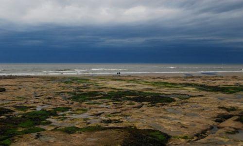 Zdjecie FRANCJA / Nor pas de Calais / Ambleteuse / Cote D'Opale 2