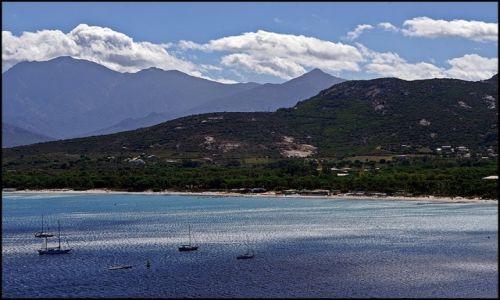 Zdjęcie FRANCJA / Korsyka / Calvi / Calvi
