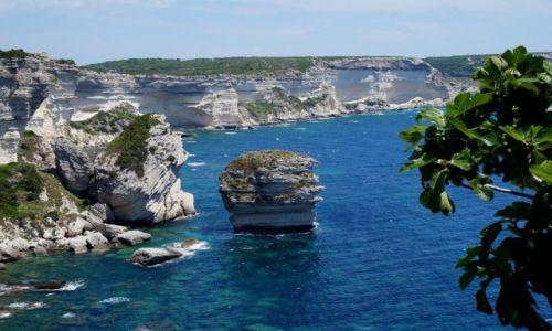 Zdjecie FRANCJA / Korsyka Płd. / Bonifacio / Samotna skała