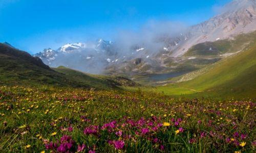 Zdjecie FRANCJA / Savoie / Vanoise National Park / Raj