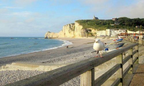 Zdjęcie FRANCJA / Normandia / Etretat / na alabastrowym wybrzeżu...