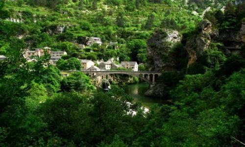 Zdjecie FRANCJA / Midi Pyrenees / Gorges du Tarn / tarn_may_looove_4