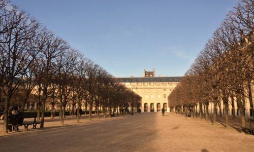 Zdjecie FRANCJA / Francja / Paryż / Palac Royal