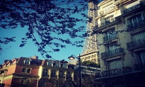 Zdjecie FRANCJA / - / Paryż / Paryskie klimaty