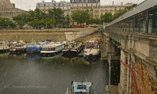 Zdjecie FRANCJA / - / Paryż / Zapłakana przystań