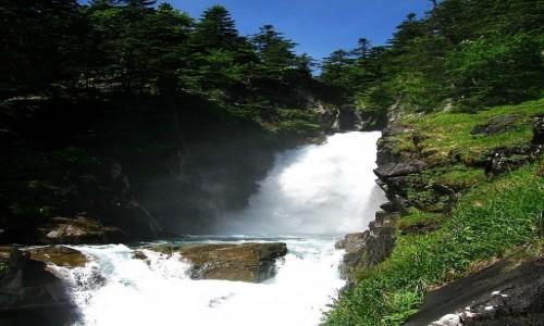 FRANCJA / Pireneje Francuskie / okolice Cauterets / górski potok