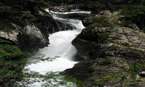 Zdjecie FRANCJA / Pireneje Francuskie / okolice Cauterets / Inny g�rski pot