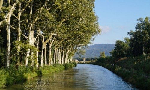 Zdjęcie FRANCJA / Langwedocja / Kanał Południowy / Kanał De Midi