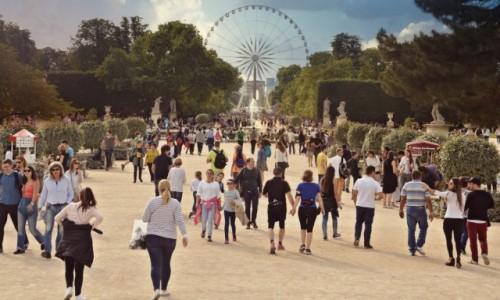 Zdjecie FRANCJA / - / Paryż / Niedzielna ucieczka od tłumów do parku...