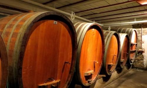 Zdjecie FRANCJA / Alzacja / Katzenthal / Pinot Blanc, Mu