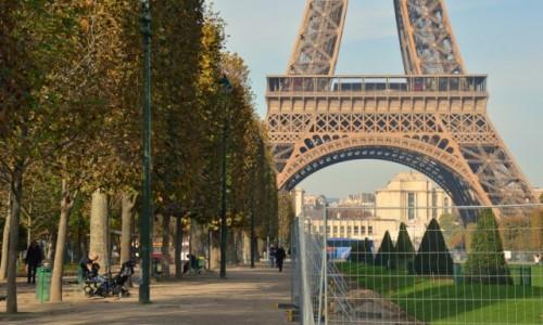 Zdjecie FRANCJA / - / Paryż / Odrobina klasyki, czyli Pola Marsowe w piękny, listopadowy dzień.
