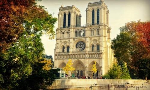 Zdjecie FRANCJA / - / Paryż / Notre Dame w jesiennej oprawie