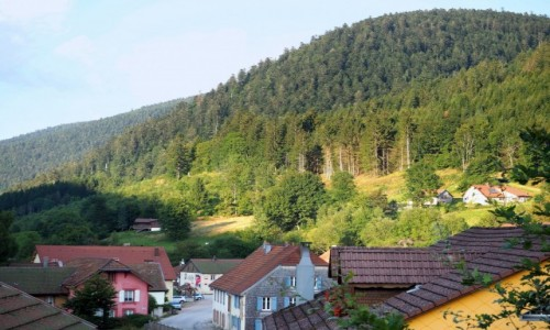 Zdjecie FRANCJA / Wogezy / Le Valtin / schowana w góra