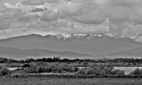 FRANCJA /  Pyrénées-Orientales / Canet-en-Roussillon / Pireneje
