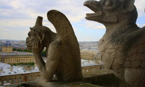 Zdjecie FRANCJA / - / Paryż / Chimery
