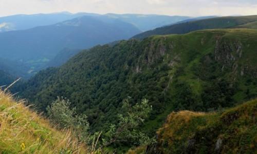 Zdjęcie FRANCJA / Lotaryngia / Vosges / na skraju...