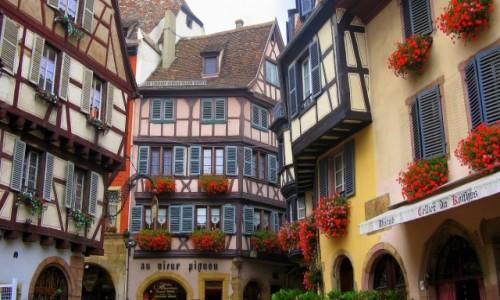 FRANCJA / Alzacja / Colmar - rue des Marchands / Uroki Alzacji - tradycyjne  domy