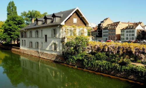 FRANCJA / Alzacja / Strasburg, Petite France / czas glicynii...