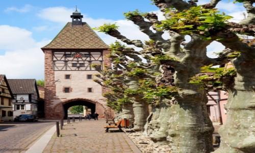 Zdjecie FRANCJA / Alzacja / Bergheim / Porte Haute...