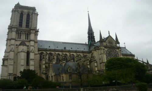 Zdjęcie FRANCJA / - / Katedra Notre-Dame w Paryżu / Katedra Notre-Dame w Paryżu