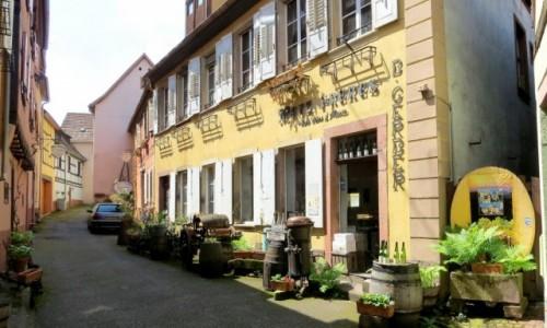 Zdjecie FRANCJA / Alzacja / Ribeauville / w świecie białego wina...