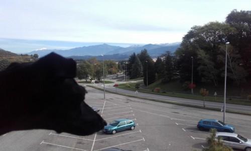 Zdjecie FRANCJA / Biała Góra, 4808,73 m n.p.m. / Widok z okna hotelu na Białą Górę, 4808,73 m n.p.m. / W oddali widok na Mont Blanc
