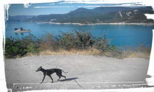 FRANCJA / Alpejski / x / lazurowe francuskie jezioro